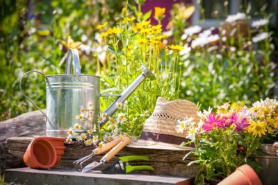 15x garden tips for June